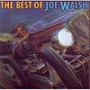 Joe Walsh (1St Press)
